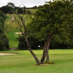 etchinghill-valley-course-1